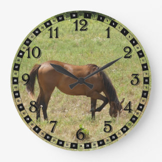 Countryside Horse Colt Foal Baby Eating Grass Large Clock