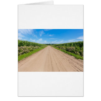 Countryside with sandy road and corn fields card