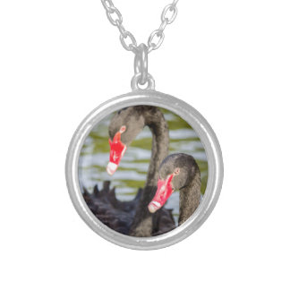 Couple black swans silver plated necklace