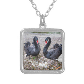 Couple black swans with eggs in nest silver plated necklace
