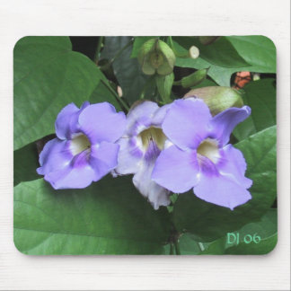 Courtyard flowers, DJ 06 Mouse Pad