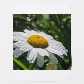 cover photo baby, a margueritte, make green baby blanket