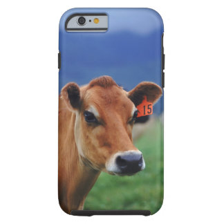 cow 2 tough iPhone 6 case