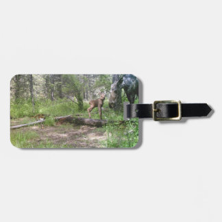 Cow and calf moose luggage tag
