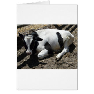 cow,baby greeting card