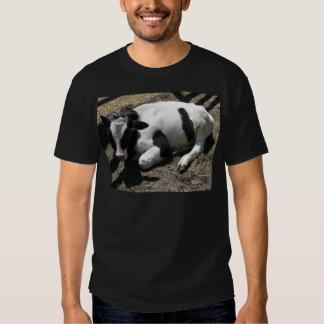 cow,baby tee shirt