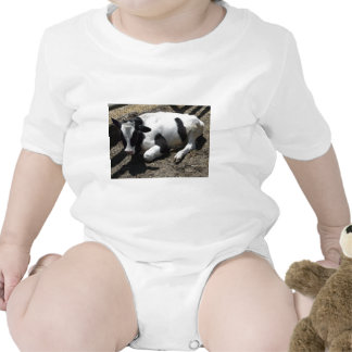 cow,baby shirt