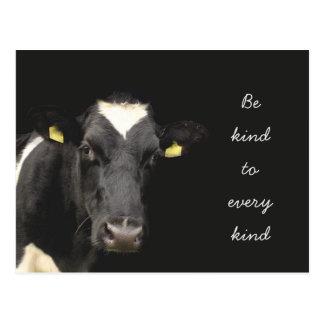 Cow || Be Kind to every kind Postcard