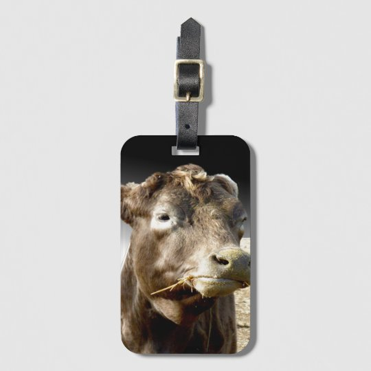 Cow Chewing Hay Popout Art, Buisness Luggage Tag