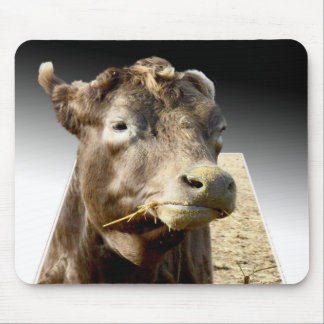 Cow Chewing Hay, Popout Art Mousepad
