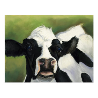 Cow Close-Up Art Postcard