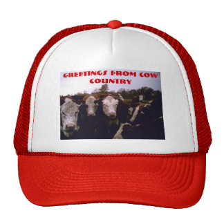 Cow Country Trucker Hat