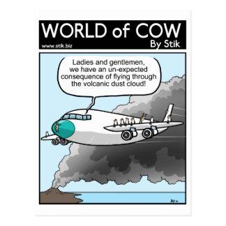Cow Dust Postcard