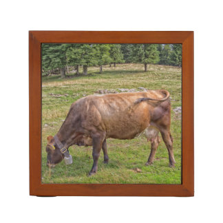 cow eating in a meadow desk organizer