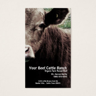 Cow Head  Beef Ranch Business Card