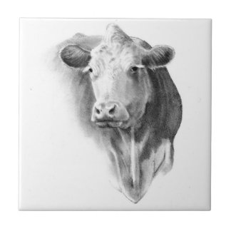 Cow Head in Pencil: Realism Art: Farm, Country Tile