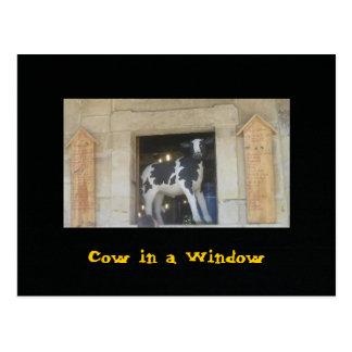 Cow in a Window Postcard
