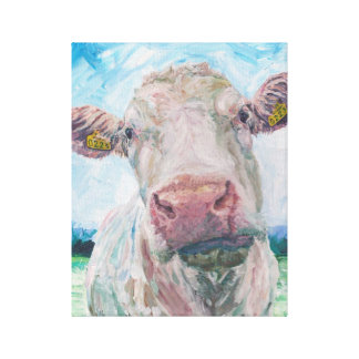 Cow no 04. 0223 Irish Charolais Cow Canvas Print