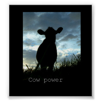 cow power poster