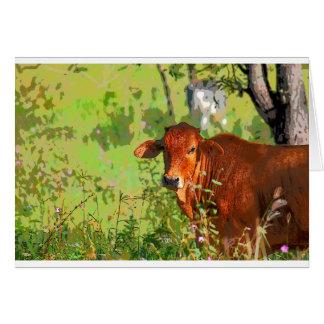 COW QUEENSLAND AUSTRALIA ART CARD