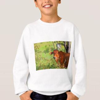 COW QUEENSLAND AUSTRALIA ART SWEATSHIRT