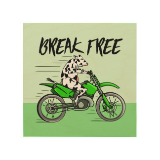 Cow Riding A Motorcyle Wood Canvases