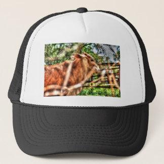 COW RURAL QUEENSLAND AUSTRALIA ART EFFECTS TRUCKER HAT