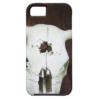 Cow Skull iPhone 5 Cover