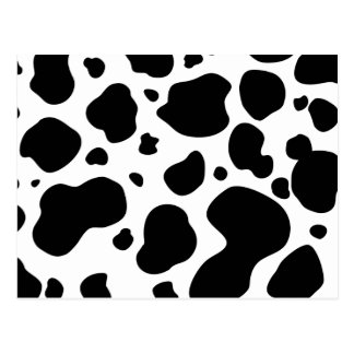 Cow Spots Pattern Black and White Animal Print Postcard