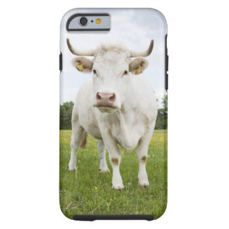 Cow standing in grassy field tough iPhone 6 case