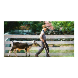 Cow -The farmer and the dell Picture Card