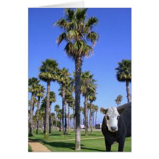 Cow Visits Santa Barbara Greeting Cards