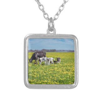 Cow with calves grazing in meadow with dandelions silver plated necklace