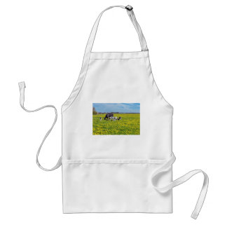 Cow with calves grazing in meadow with dandelions standard apron