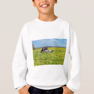 Cow with calves grazing in meadow with dandelions sweatshirt