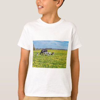 Cow with calves grazing in meadow with dandelions T-Shirt