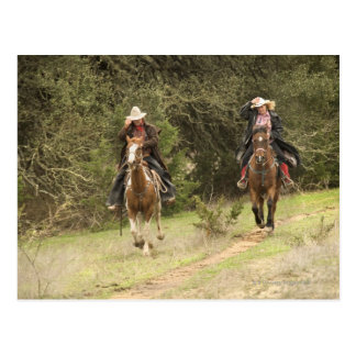 Cowboy couple riding horses postcard