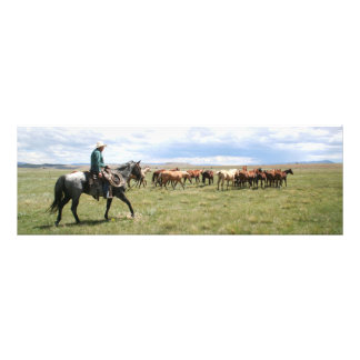 Cowboy Herding Horses Out West Photo