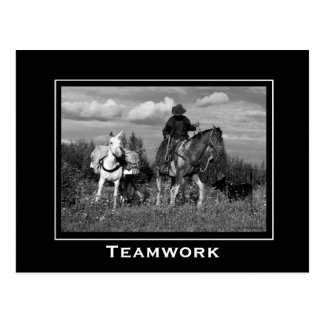 Cowboy Horse and Mule Motivational Postcards