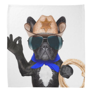 cowboy pug - dog cowboy bandana