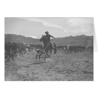 Cowboy roping a calf for spring branding card