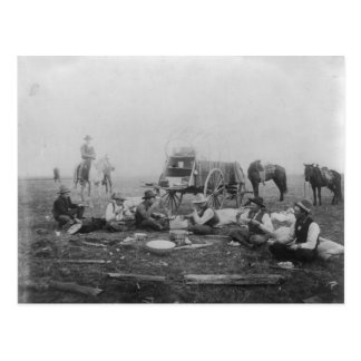 Cowboys Eating Out On The Range Postcard