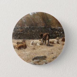 Cows 2 Inch Round Button