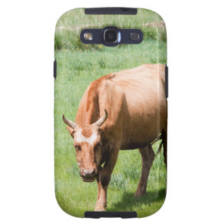 cows and bulls galaxy s3 covers
