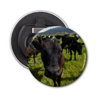 Cows and Mt Somers Bottle Opener