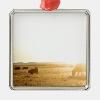 Cows at Sunrise on the Prairies Metal Ornament