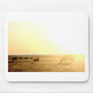Cows at Sunrise on the Prairies Mouse Pad