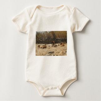 Cows Baby Bodysuit