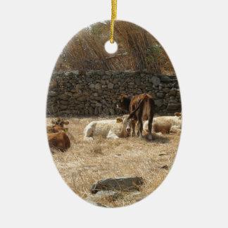 Cows Ceramic Oval Ornament