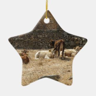 Cows Ceramic Star Ornament